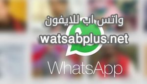 watsab-web-iphone-WhatsApp